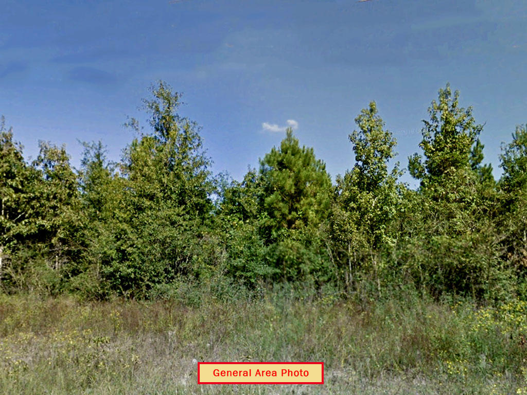Build your Dream Home on Amazing Country Land - Image 4