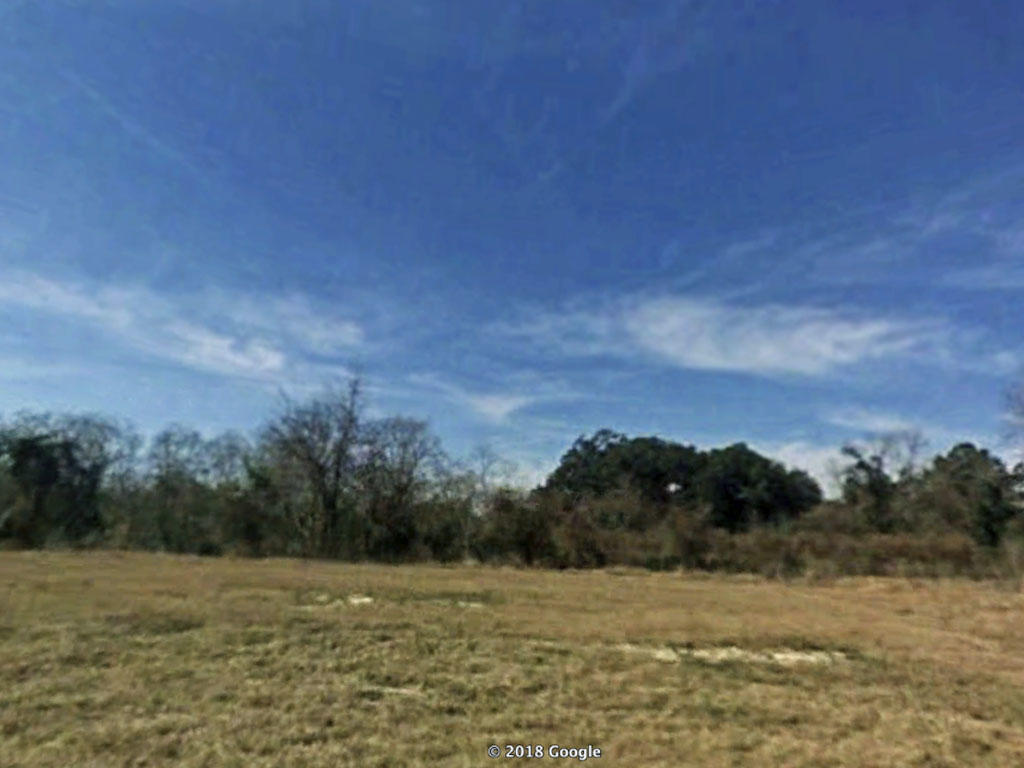 Remarkable 1 Acre Parcel in Jacksonville - Image 3