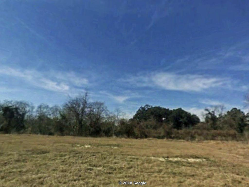 Remarkable 1 Acre Parcel in Jacksonville - Image 2