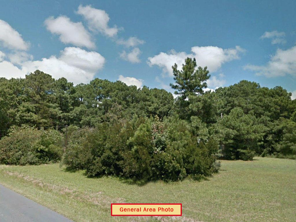 Gorgeous Quarter Acre Property Near Chincoteague Bay - Image 3