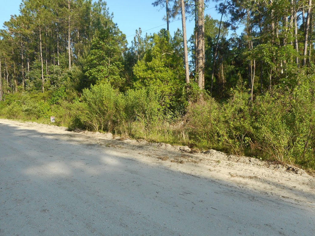 Almost a Quarter Acre on Domingo Road - Image 4