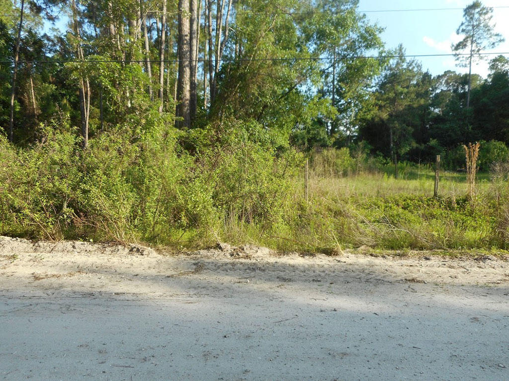 Almost a Quarter Acre on Domingo Road - Image 5