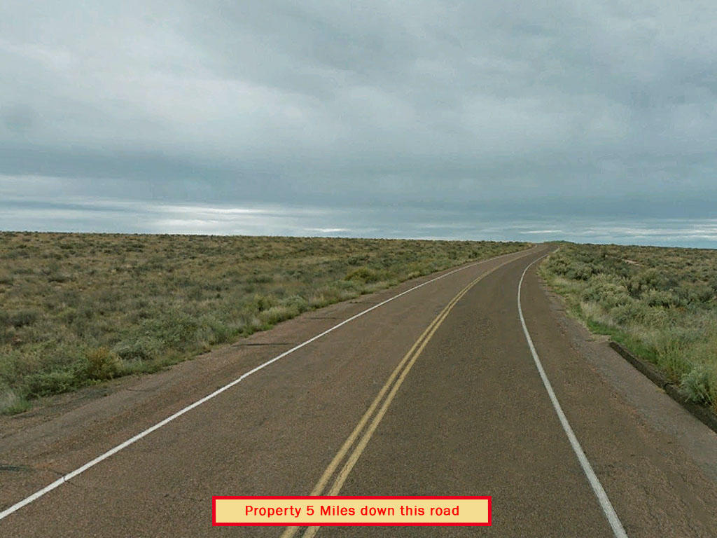 Forty Acre Property Near Petrified Forest - Image 4