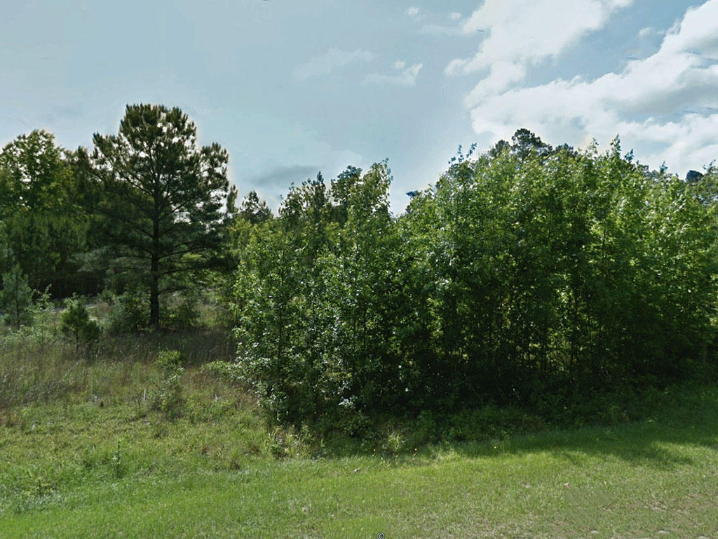 Beautiful Half Acre in Historic Antioch - Image 3