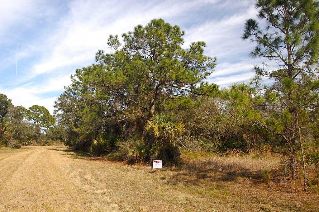 Beautiful Property Near Florida Coast - Image 4