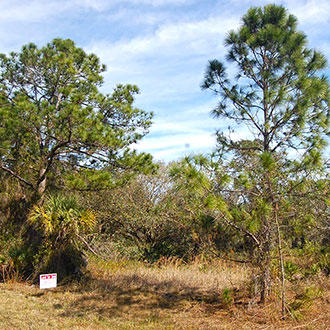 Beautiful Property Near Florida Coast - Image 0