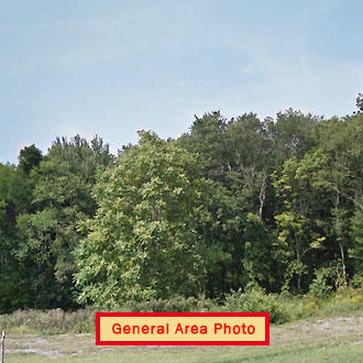 Rural Retreat on Stunning 6 Acres - Image 0
