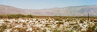Beautiful 2 Acres Under Desert Skies - Image 5