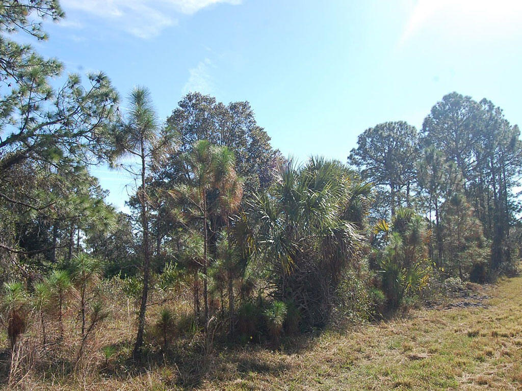 Amazing Property Under Sunny Florida Skies - Image 5
