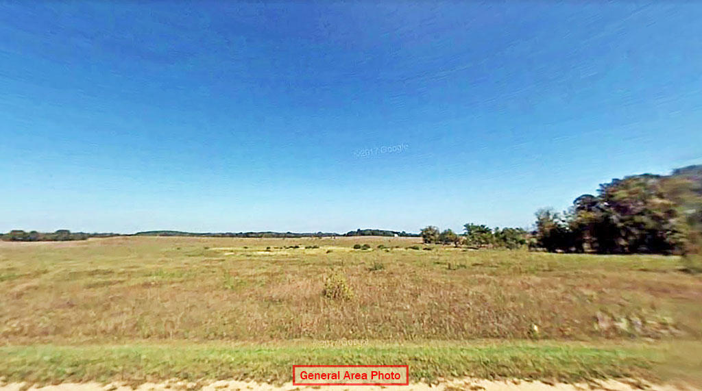 Just Under 1 Acre Todd County Property - Image 3
