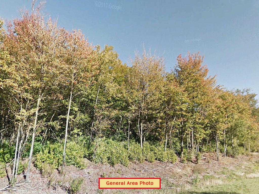 Perfect Land Investment Near Two Lakes - Image 4