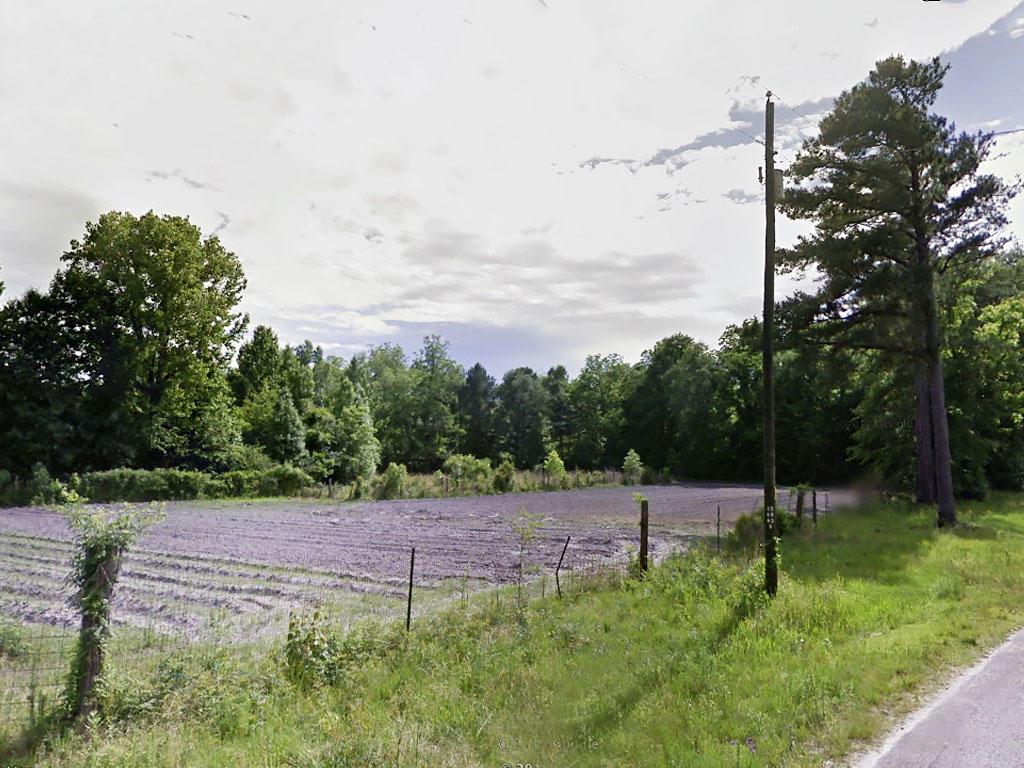 Small Farming Macon Alabama Tract - Image 4