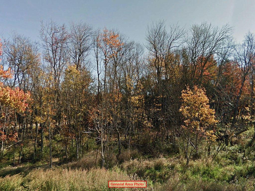 Rare Two Parcel Lot Near Gorgeous Lakes - Image 3