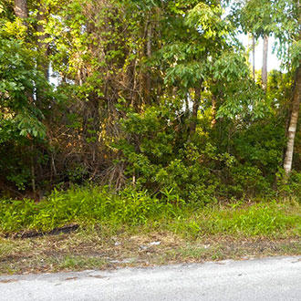 Residential Lot close to St Johns River - Image 1