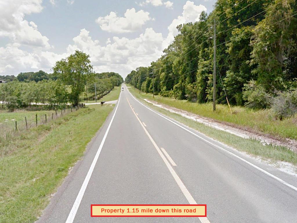 Escape the City Bustle to Rural Acreage in Florida - Image 4