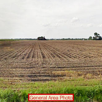 Stunning Half Acre of Fertile Land - Image 0