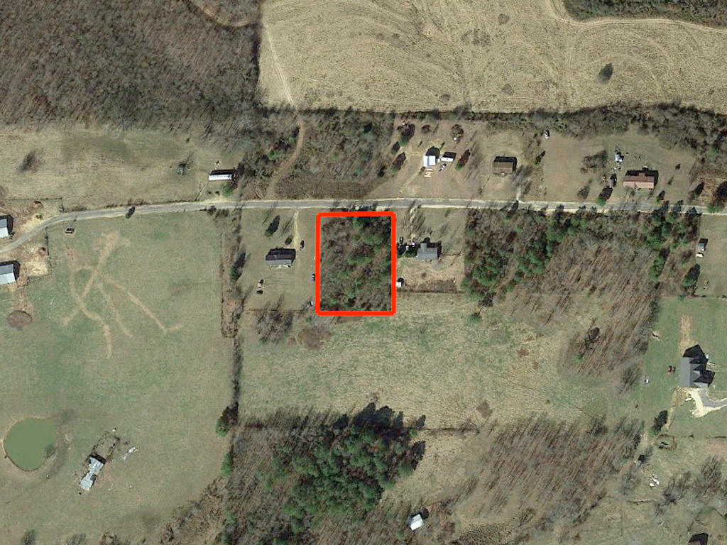 Dekalb County Alabama One Acre Treed Tract - Image 2