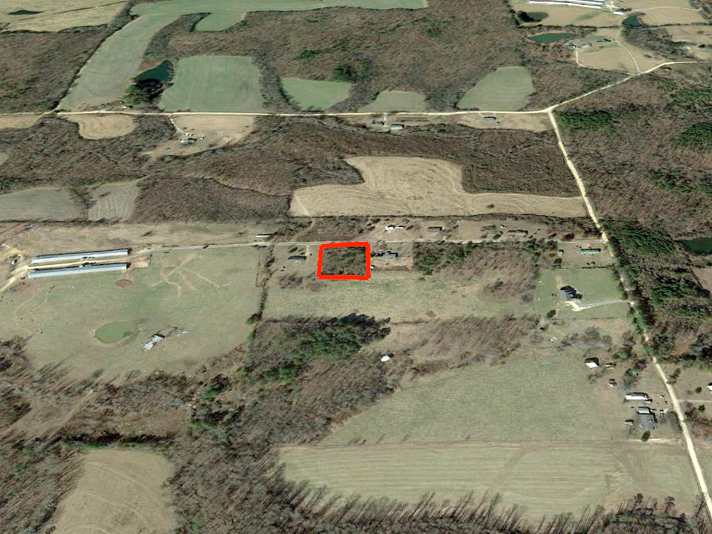 Dekalb County Alabama One Acre Treed Tract - Image 3