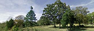 Nearly half an acre near Bradford