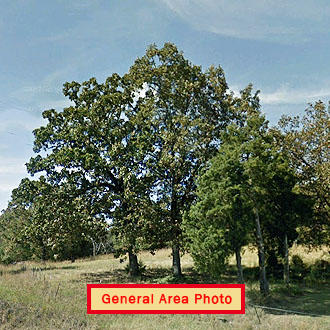 Nearly half an acre near Bradford - Image 0