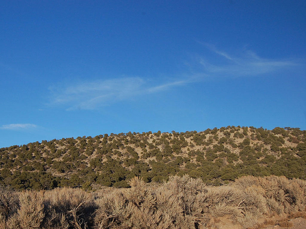 Mountain Views in Southern Colorado - Image 5