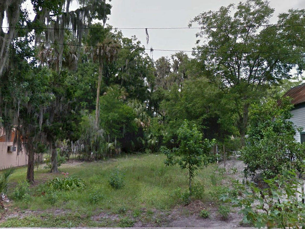 Residential Lot in Palatka Near the Saint Johns River - Image 3