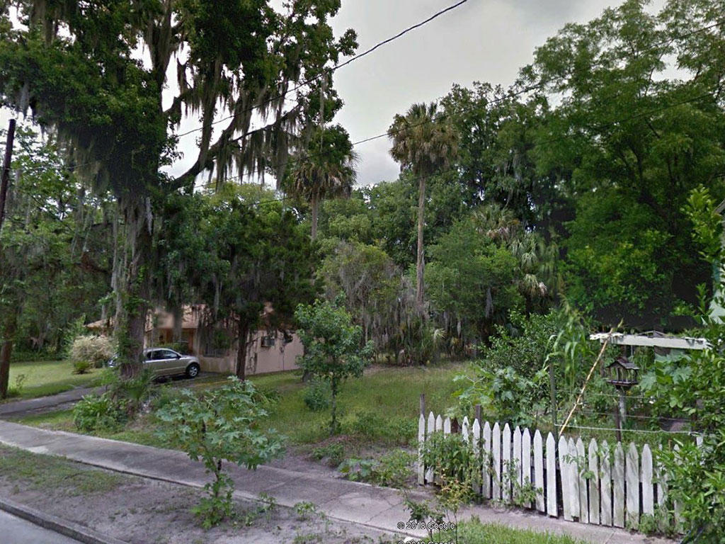 Residential Lot in Palatka Near the Saint Johns River - Image 4