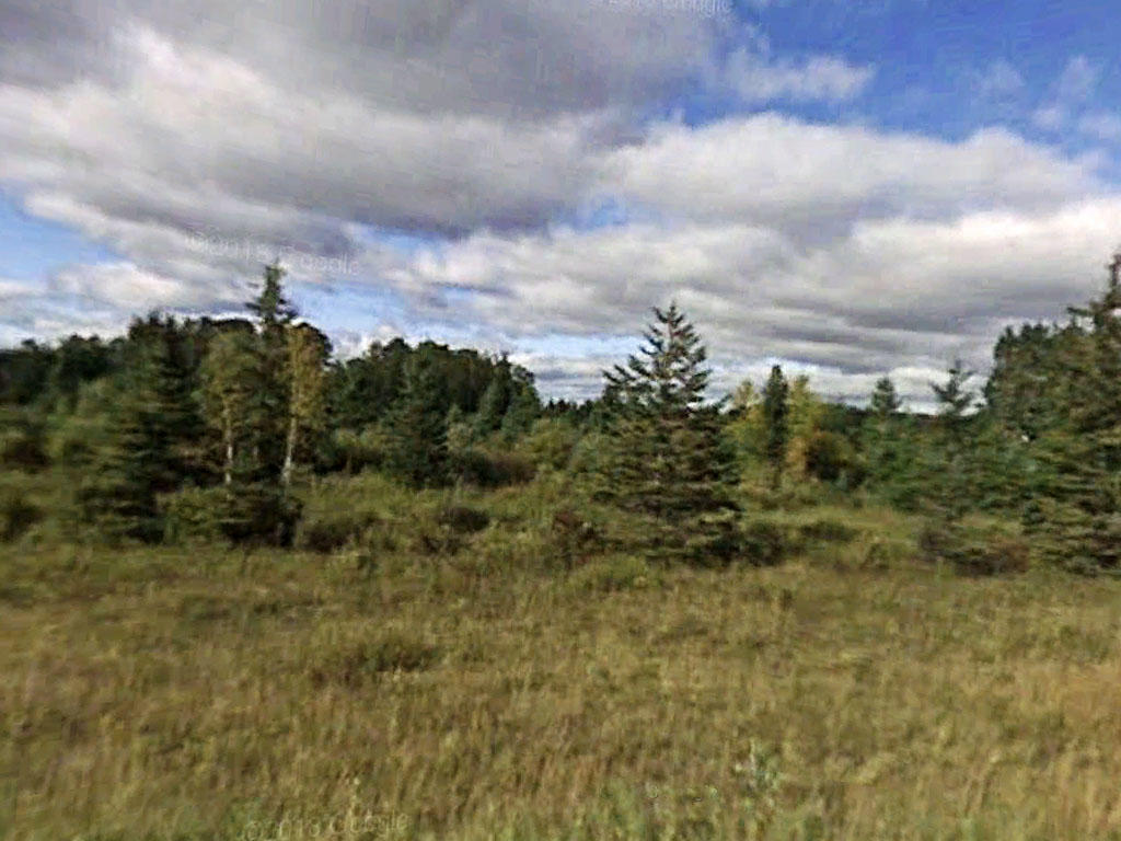 18 Acres of Pure Minnesota Land - Image 4