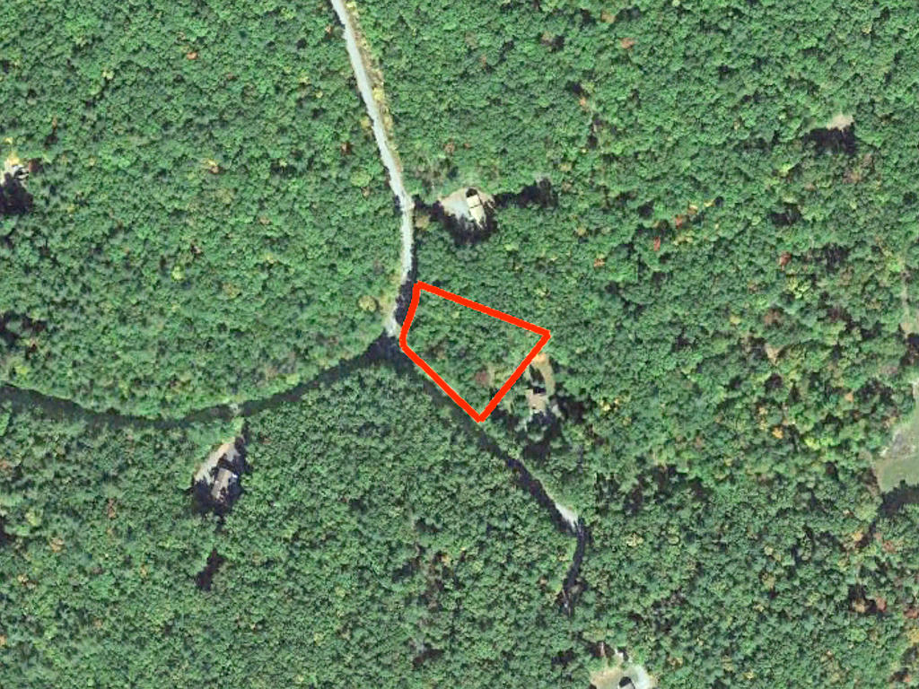 Just Over an Acre Pristine Privacy in Pike County - Image 2