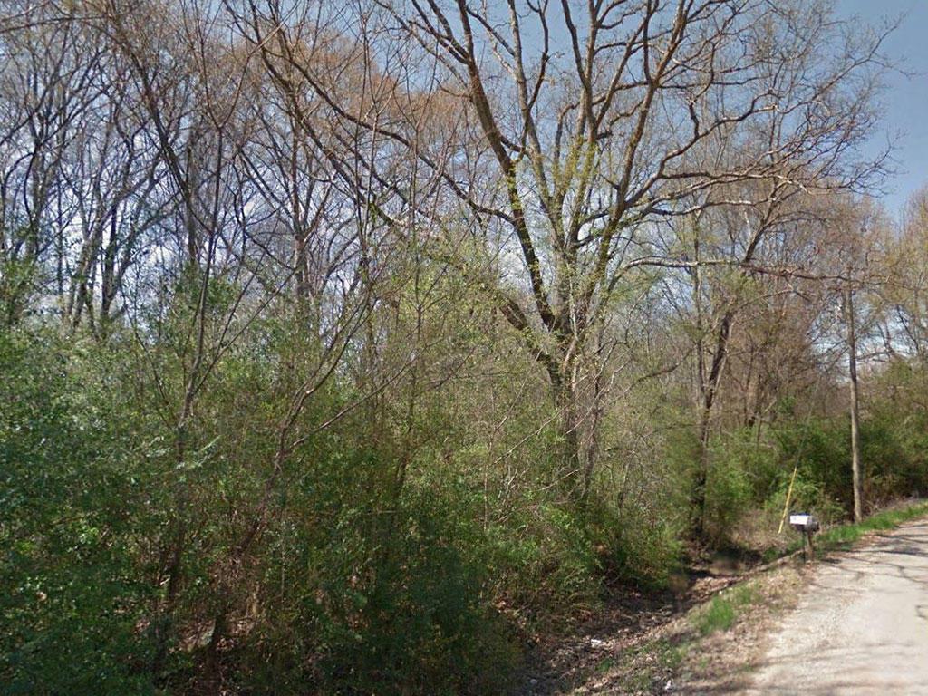 Half acre of Wooded Alabama Wonder - Image 3