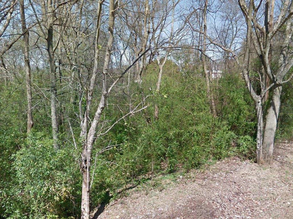 Half acre of Wooded Alabama Wonder - Image 4