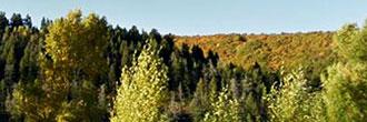 Serene Mountain Views Near Clark