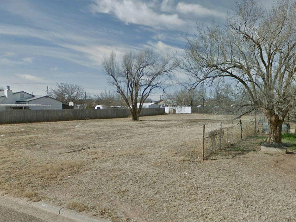 Small Town Sanctuary 40 miles from Lubbock Texas - Image 4