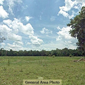 Quiet 1.50 Acre Parcel Close to the Florida and Georgia State Line - Image 1