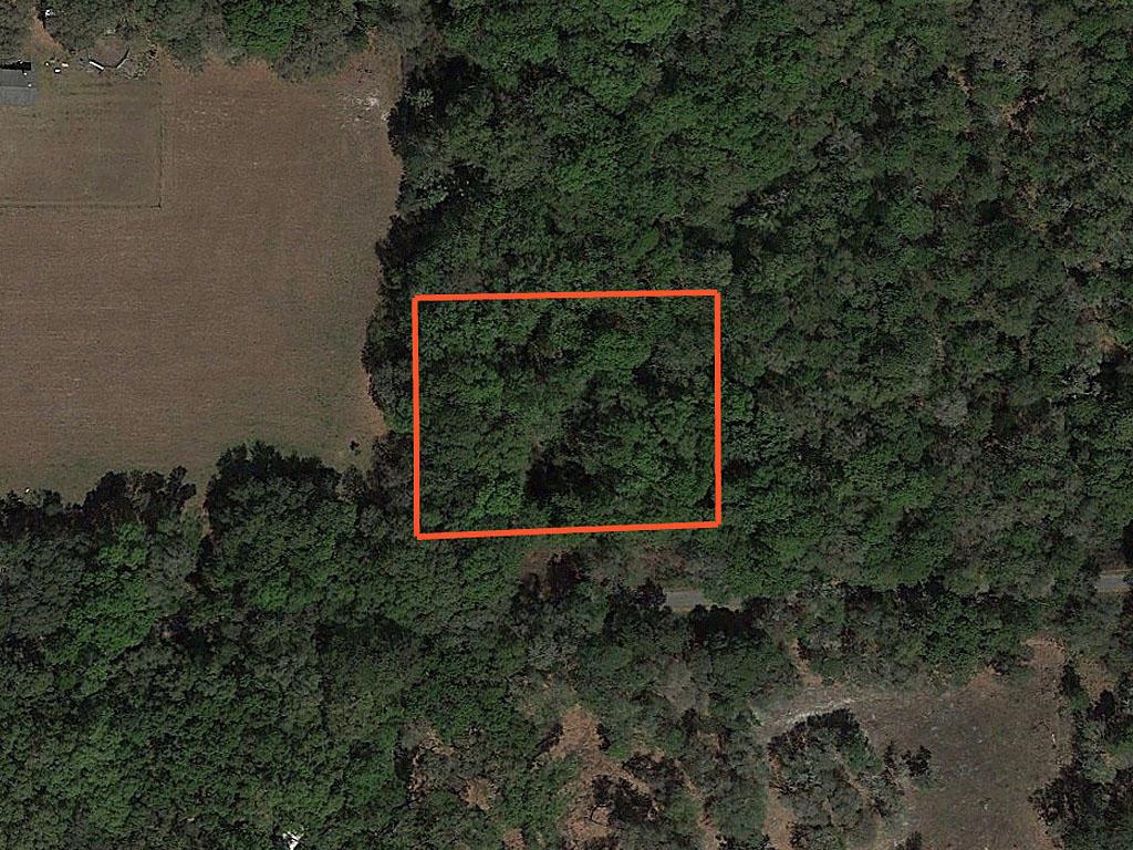 One Acre Property near Florahome - Image 1