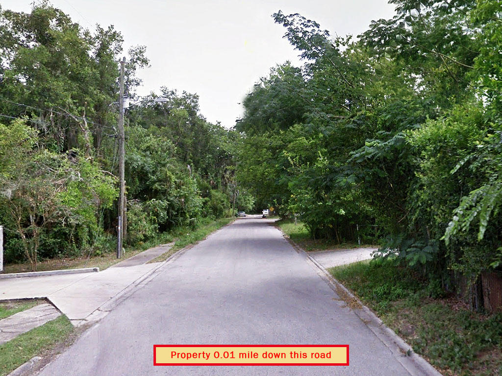Private Acre in Palatka Florida - Image 4