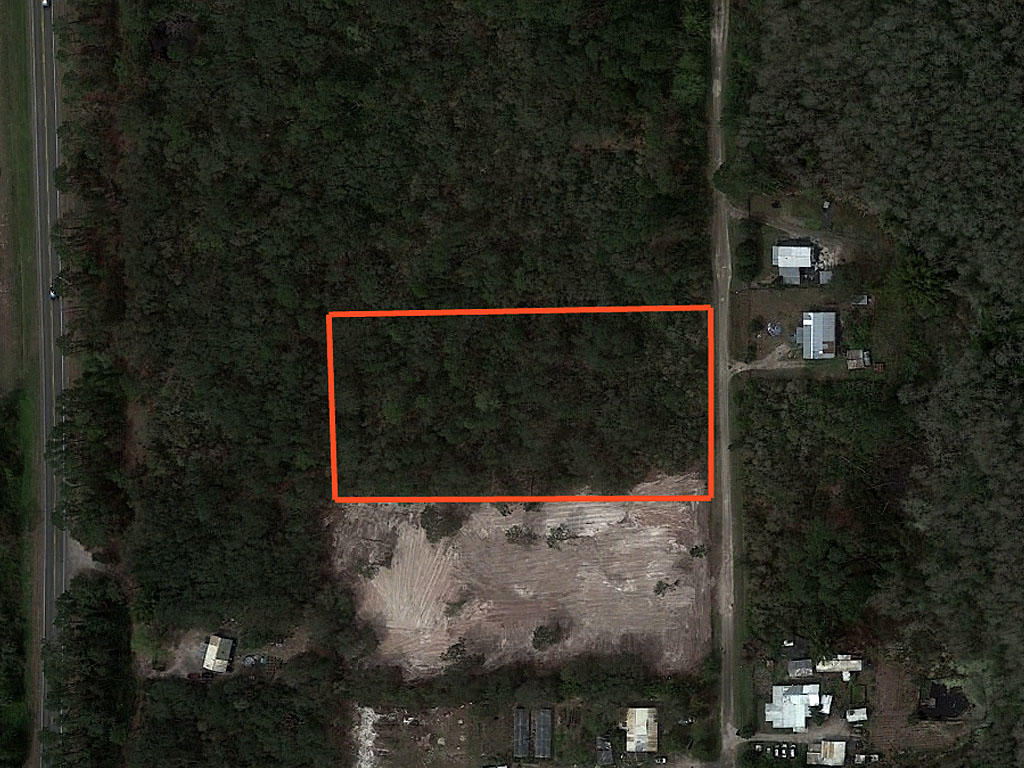 Spacious 2 Acres in Beautiful Sunshine State - Image 1