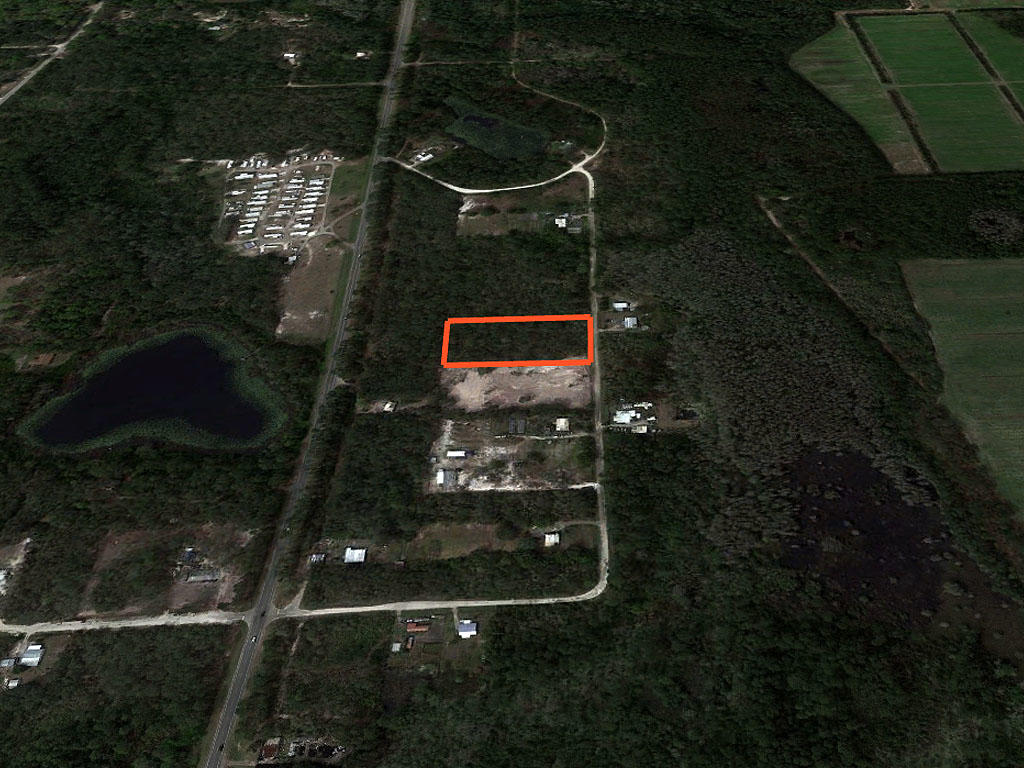 Spacious 2 Acres in Beautiful Sunshine State - Image 2