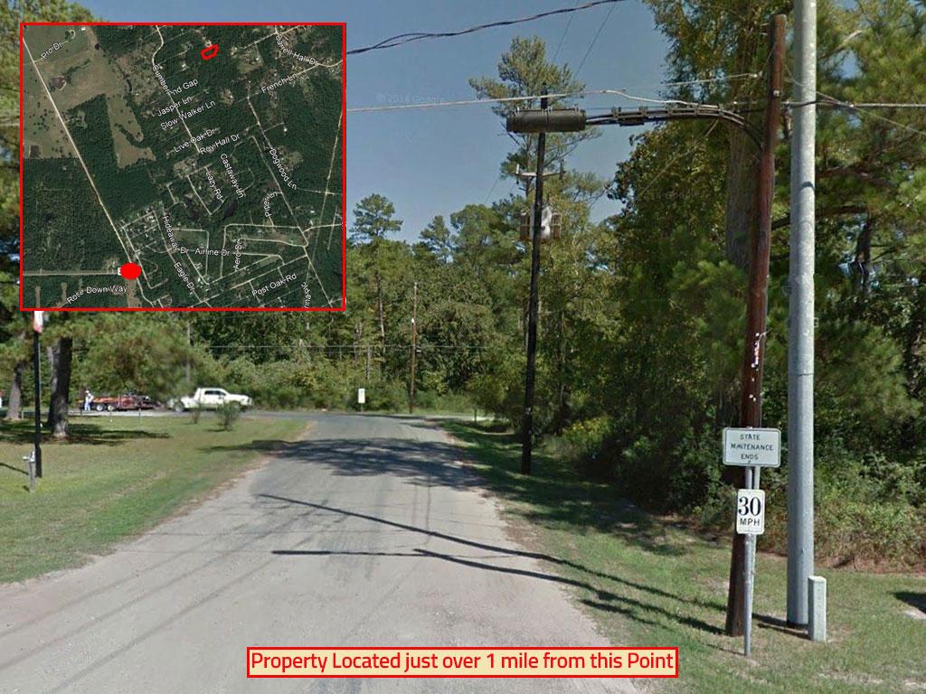 Trinity Texas Acreage on Dead End Street - Image 4