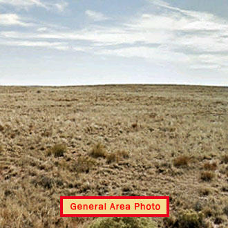 Over 10 acres of peaceful property - Image 0