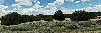 Stunning 40 Acres on Spacious Desert Land