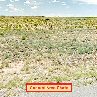 Spread Out and Kick Back on Your Sprawling New Mexico Acreage - Image 1