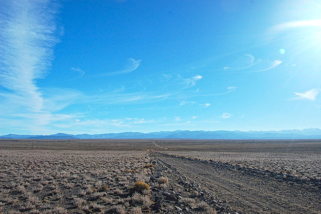 Almost Forty Acres in San Luis Valley - Image 5