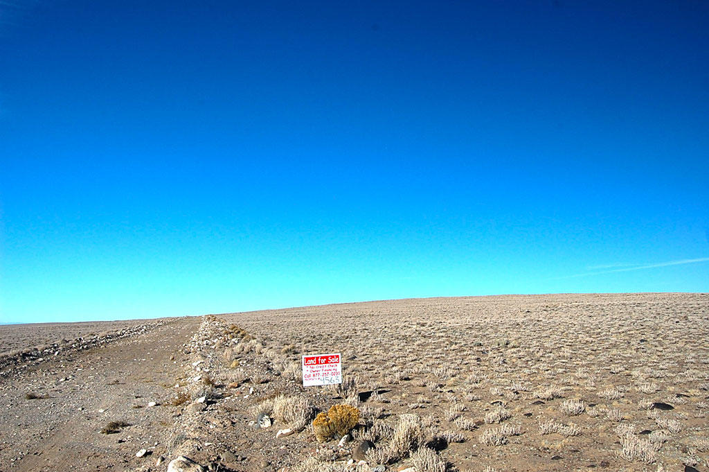 Almost Forty Acres in San Luis Valley - Image 6