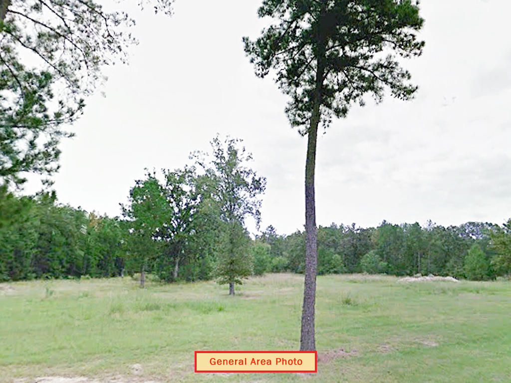 Over an acre in scenic area - Image 3
