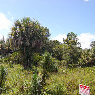 Over Half an Acre in Highlands Park Estate Neighborhood of Lake Placid - Image 0