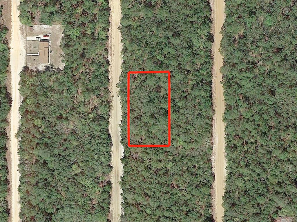 Rare Three Lot Florahome Florida Property - Image 2