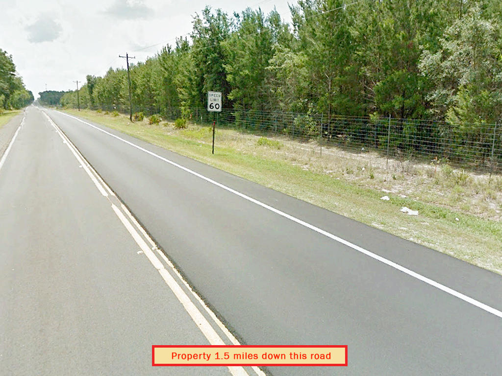 Rare Three Lot Florahome Florida Property - Image 5