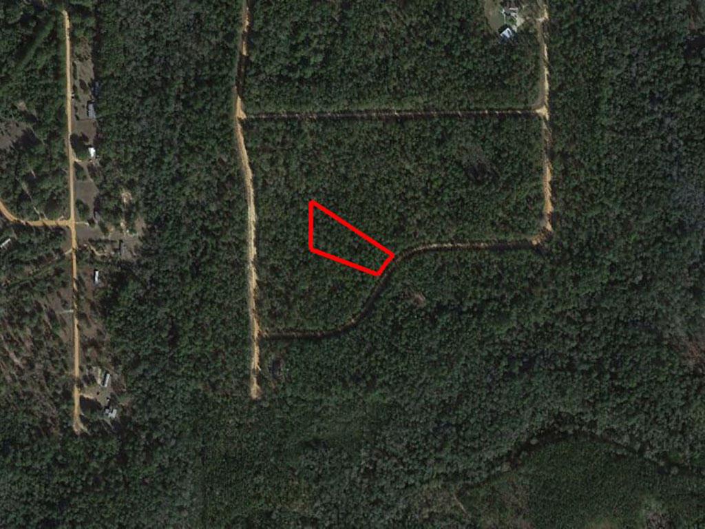Large Acreage Jackson Florida Tract - Image 1