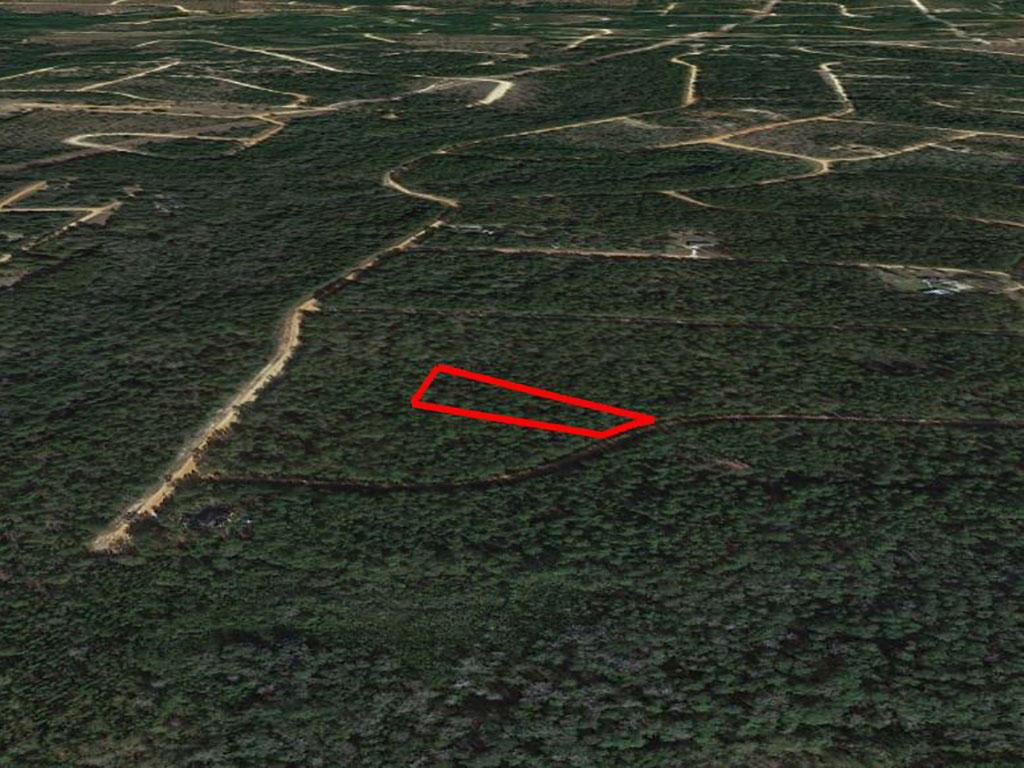 Large Acreage Jackson Florida Tract - Image 2